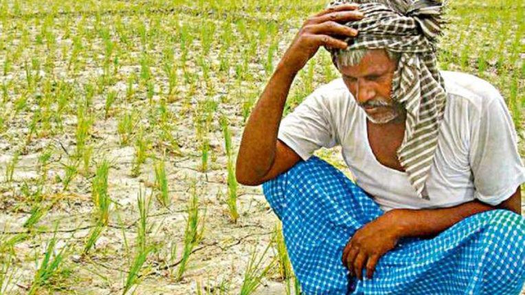 शेतकऱ्यांची फसवणूक केल्यास होणार तब्बल 'इतक्या' वर्षांचा कारावास; राज्याच्या नवीन कृषी कायद्यात तरतूद