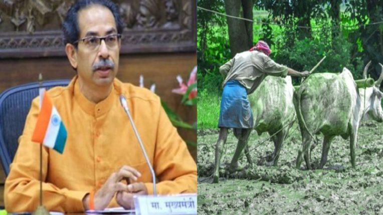 पेरणीसाठी किडनी विकण्याची परवानगी द्या; शेतकऱ्याची थेट मुख्यमंत्री उद्धव ठाकरेंकडे मागणी