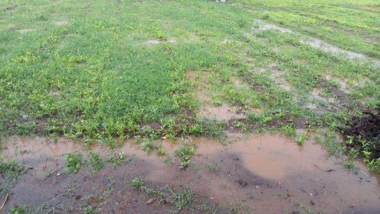 नाशिकरोड परिसरात मुसळधार पाऊस