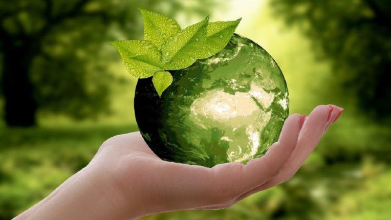 असे द्या पर्यावरण संरक्षणात आपले योगदान