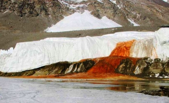 'Glacier Blood' seen on the glacier; The research found shocking information