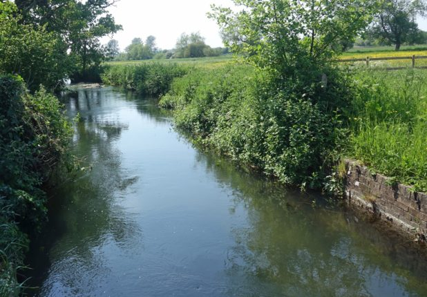जायकाच्या निविदावर तब्बल १३०० शंका ; मुळा-मुठा नदी संवर्धन योजनेला काही केल्या मुहूर्त मिळेना