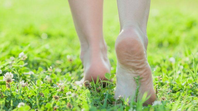 व्यायामात 'ग्रीन थेअरपीचा' समावेश करा ; अन 'हे'  बदल अनुभवा