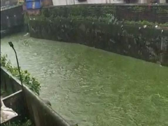 हिरव्या रंगाचे पाणी वाहत असल्याप्रकरणी Ribopham Laboratory कंपनीवर कारवाईचा बडगा