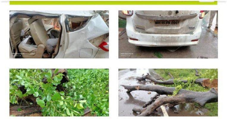 The tree fell on the running car; Three teachers killed on the spot