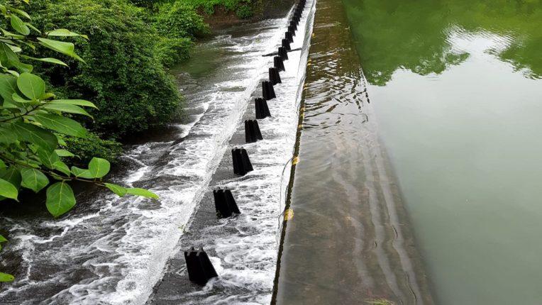 तुळसी तलाव भरुन वाहू लागला; तलावात ८०४६ दशलक्ष लीटर इतक्या जलसाठयाची क्षमता