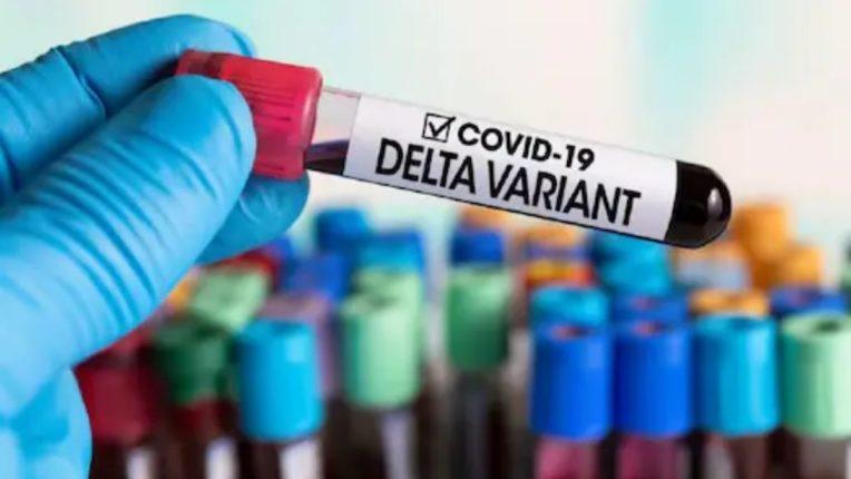 कोरोना लसीचे दाेन्ही डाेस घेतलेल्यांना 'डेल्टा प्लस व्हेरिएंट'ची दाहकता व परिणाम कमी- डाॅ. संजय ओक, टास्क फाेर्स प्रमुख