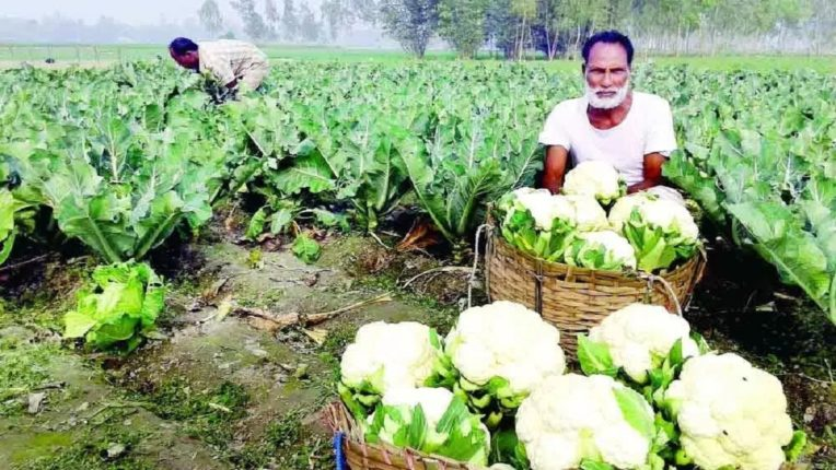 कृषी उत्पादन वाढवा, इतके म्हणन होत नाही; त्यासाठी पायाभूत सुविधाही सक्षम कराव्या लागतात