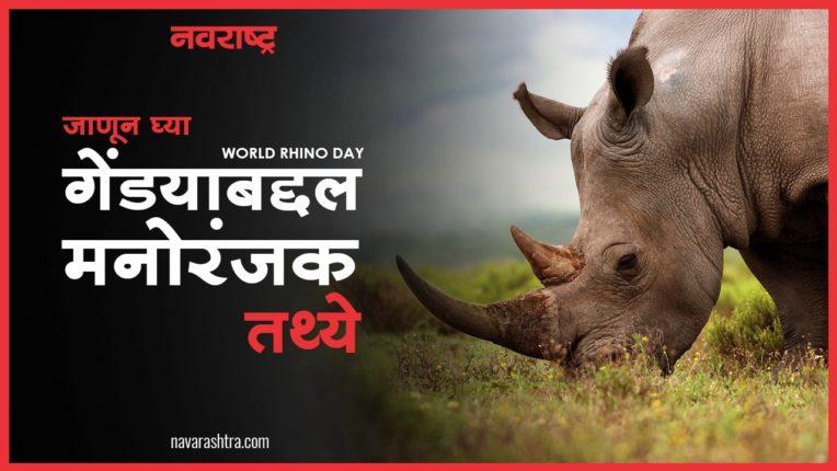 World Rhino Day निमित्त गेंड्याबद्दल जाणून घ्या काही मनोरंजक तथ्ये, पाहा VIDEO…
