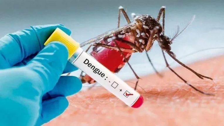 अमरावतीत कोरोनानंतर डेंग्यूचाही कहर; संशयित रुग्णसंख्या २०६७ वर