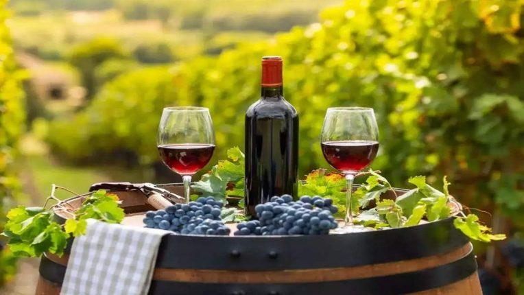 आयुर्वेदाने Wine ला म्हटलं दवा, रेड वाईनने लाभते दिर्घायुष्य, अशी प्यायल्याने होतील अनेक Benefits