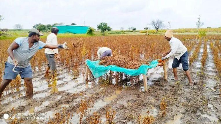 दुपारी ३ ते सायंकाळी ७ पर्यंत शेतात काम करू नका; लातूर जिल्हा प्रशासनाचे शेतकऱ्यांना आवाहन