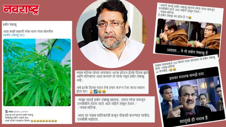 The NCB does not know the difference between tobacco and marijuana; Trolls trolled Nawab Malik saying cannabis is herbal tobacco