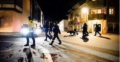 धक्कादायक! सुपरमार्केटमध्ये माथेफिरुने धनुष्य-बाणाने केला हल्ला, ५ जणांचा मृत्यू, २ जण जखमी, नॉर्वेतील घटना